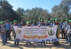 الكتلة الإسلامية بشرق غزة تنظم حملة جني الزيتون التطوعية بالتعاون مع الكشافة بمديرية شرق غزة.